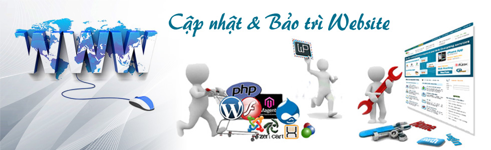 Cập nhật nội dung và bảo trì website