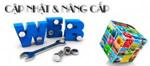 dich_vu_nang_cap_website