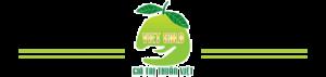 Việt Gold Group Logo