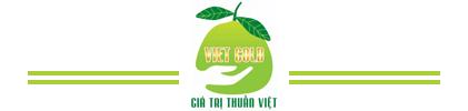 Công ty cổ phần Việt Gold Group